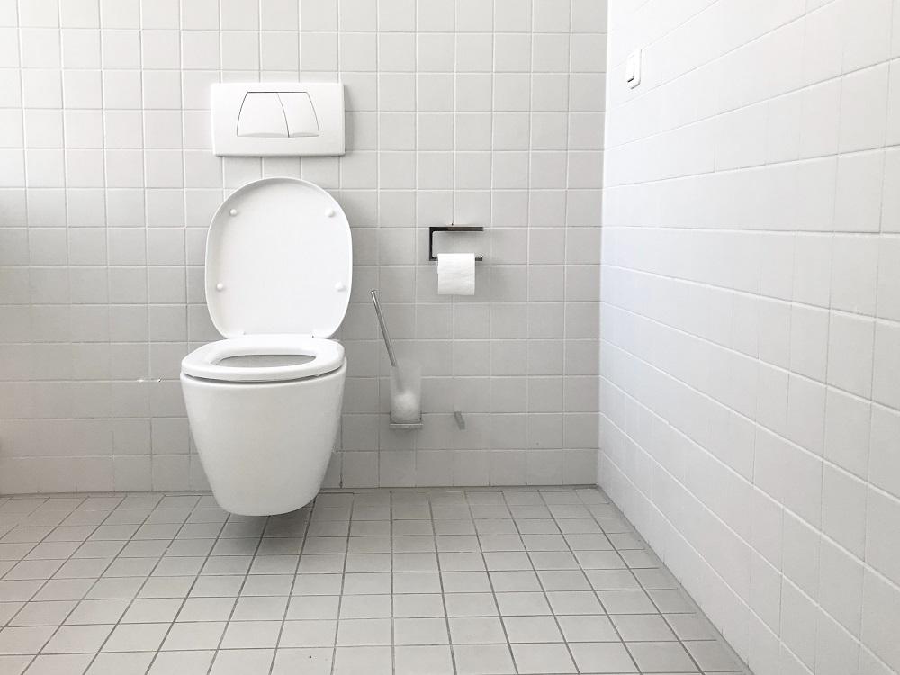alternatives to plastic toilet brushes